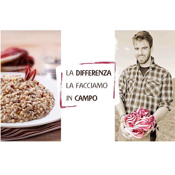 pannello_federad